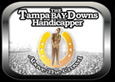 Tampa Bay Downs Handicapper