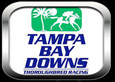Tampa Bay Downs LIVE FEED